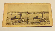 Unframed 1880s Collectable Antique Stereoviews (Pre-1940)