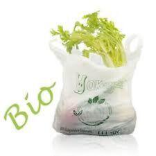 Shopper 24x40 / 27x50 / 30x60 / 35x65 Biodegradabili Sacchetti Buste Spesa Umido