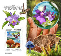 Sierra Leone Plants Stamps 2020 MNH Year Plant Health Flowers Mushrooms 1v S/S