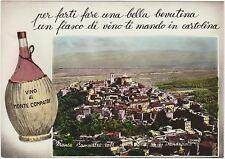 MONTE COMPATRI - PANORAMA - VINO (ROMA) 1956