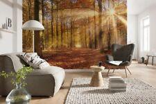 Fotomurale ALBA D'ORO Carta da Parati paesaggio bosco | Poster Murale
