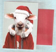 Sheep Lamb Bah Baaa Humbug Christmas Cards Box of 8 Printed in Us