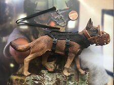 Soldier Story SDU Assault K9 Chien Avec Corps Harnais & Lead loose échelle 1/6th