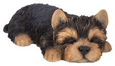 Vivid Arts - PET PALS SLEEPING PUPPY DOG & YORKIE BOX - Yorkshire Terrier