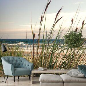 Vlies Fototapete Dünen Meer Gras Strand Ostsee Landschaft Wohnzimmer Himmel 82