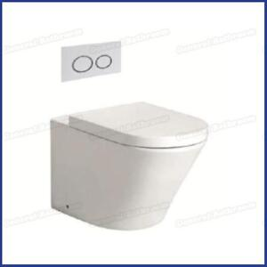 In Wall Toilet Suite --Wall Floor Mount Pan & Concealed In Wall Cistern