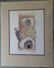 """James P Townsend """"Racoons & Wood Pecker"""" Signed and Numbered Print"""