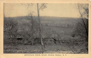 H71/ Preston Hollow New York Postcard c1910 Mountain From Road  220
