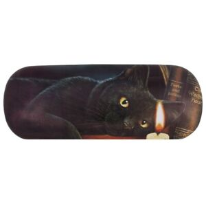 Witching Hour Glasses Case By Lisa Parker - Brand New