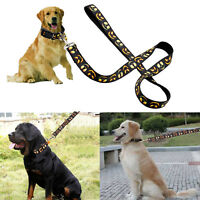 Designer Dog Collar and Leash Lead Set Adjustable for Small Medium Large Dogs