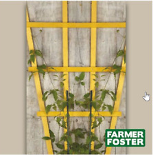 Natural Fan Plant Trellis PACK OF 5