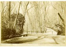 Linares. Espagne, Granada, Paseos de la Alhambra Vintage print.  Tirage citrat