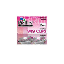 Brittny Wig Clips Hair Extension Accessories Holder Small 2pcs Silver #BR48306
