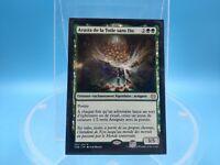 carte x1 magic MTG theros FR arasta de la toile sans fin 165/254
