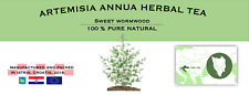 Artemisia annua Sweet Wormwood Organic Dried Health Tea Annie Sagewort Mugwort
