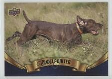 2018 Upper Deck Canine Collection Blue Pudelpointer #241 f5g