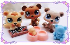 Littlest Pet Shop LPS Authen RARE  #1554 1555 1556 Petriplets Bear Cub Triplets