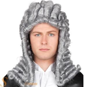 Adult Judge Wig Grey Barrister Lawyer Court Fancy Dress Costume Accessory