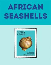 Sierral Leone - African Seashells Stamp - Souvenir Sheet MNH