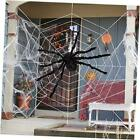 """Halloween 60"""" Giant Fake Spider Web Decoration, with 200"""" Spider Web for"""