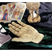 Mystical Victorian Era Palmistry Left Hand Fortune Teller Sculpture