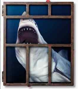Michel Muller 'Sharks' - Taschen Limited Edition