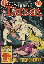 DC Comics Tarzan Of The Apes (1972 Series) # 219 FN/VF 7.0