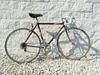 Peugeot Vintage French Racing Road Bike! ~ Reynolds 501 Tubing ~12 Speed~ 52cm
