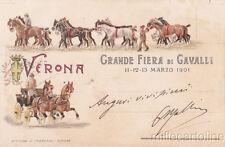 * VERONA - Grande Fiera di Cavalli 1901