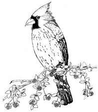 Unmounted Rubber Stamp, Bird Stamps, Flowers, Nature, Birds, Cardinal, Cardinals