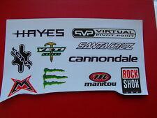 10 mixed High Gloss Cycle Bike Frame Stickers Decals Santa CruzRock Shox Monster