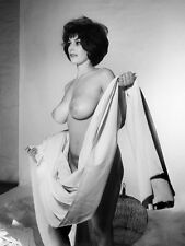 60s Tall Nude Holding window drapes with huge DD Breasts 8 x 10 Photograph