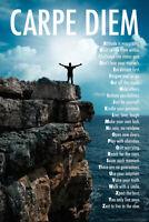 Carpe Diem AZ Mountaintop Motivational Poster 12x18 inch