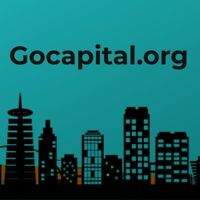 GOCAPITAL.ORG Domain Name Sale Premium Letter Brandable  - Marketable Org