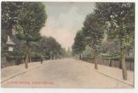 Telford Avenue Streatham Hill London 1905 Postcard 800b