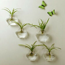 Wall Hanging Planter Glass Hydroponic Vase Plant Pot Terrarium Hexagon, 13cm