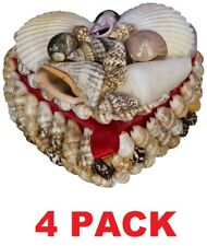4 Beach Combers Heart Shell Trinket Box, glossy natural seashell décor (4 Pack)