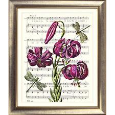 ART PRINT ORIGINAL VINTAGE MUSIC SHEET Page DRAGONFLY FLOWER Lily PINK BOTANICAL