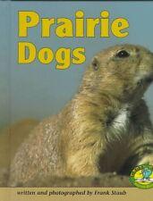 Prairie Dogs (Early Bird Nature)