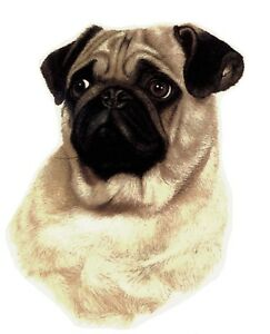 Pug Sad Eyed Puppy Dog Select-A-Size Waterslide Ceramic Decals Xx