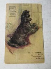 Maud West Watson SKYE TERRIER PUPPY Tuck Oilette DOG Postcard VINTAGE