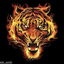 Flaming Tiger HEAT PRESS TRANSFER for T Shirt Sweatshirt Tote Quilt Fabric #293o