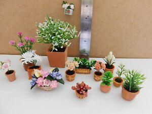 Dolls house bundle of pot plants