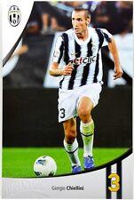 Cartoncino Juventus Stagione 2011/12 - Giorgio Chiellini