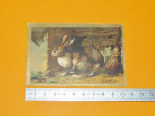 RARE CHROMO 1890-1910 ECOLE BON-POINT LAPIN