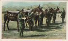 N°20 Soldiers Italy Italia Infantry mules World War Germany WWI 30s CHROMO