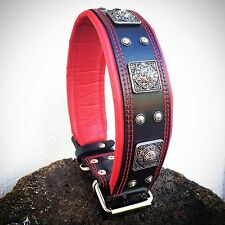 Real leather, hand made, rivet decoration, XXL size dog collar