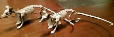 New Lot of 2 White Skeleton Dead Rat Rodent Halloween Prop Party Decoration