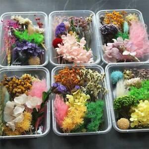 1 Box Dried Flowers Plant Aromatherapy Candle Epoxy Resin Pendant DIY Craft Kit