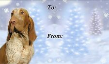 Bracco Italiano Christmas Labels by Starprint